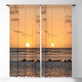 Full Sun.... Blackout Curtain