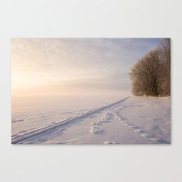 A romantic view from Finland Canvas Print