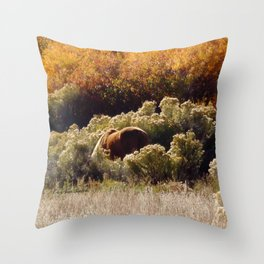 Palomino Pony in Autumn Golds photography by CheyAnne Sexton Throw Pillow