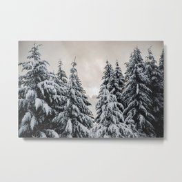 Winter Woods II - Snow Capped Forest Adventure Nature Photography Metal Print