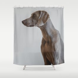 Dog by Cristofer Jeschke Shower Curtain