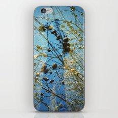 Shading iPhone & iPod Skin