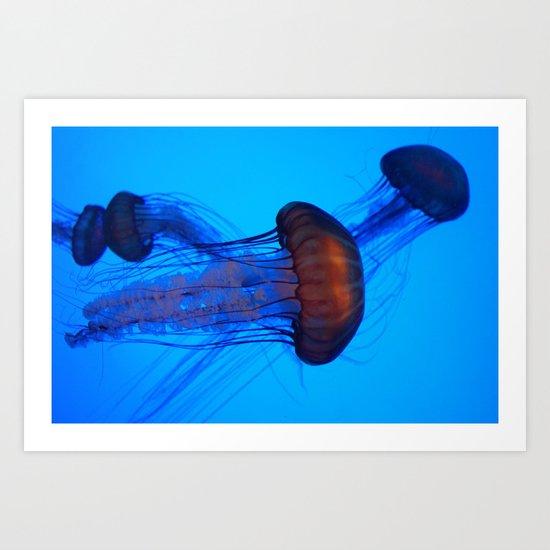 Glowing Jellyfish_1 Art Print
