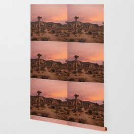 Joshua Tree Sunset Wallpaper