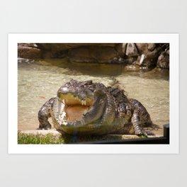 Crocodilian Art Print