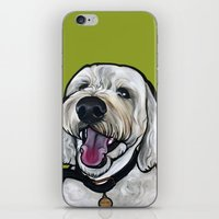kermit iPhone & iPod Skins featuring Kermit the labradoodle by Pawblo Picasso