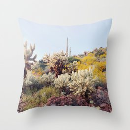 Arizona Color Throw Pillow