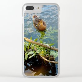 Ducks in Lake Clear iPhone Case