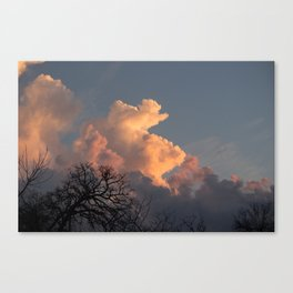 the clouds seem to mimic the treeline. Canvas Print