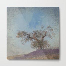 Olive Tree and Lavender Metal Print