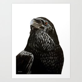 Black Crow Painting. Art Print