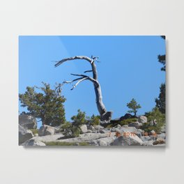 Rubicon Trail California-1, just a part of the trail. Metal Print
