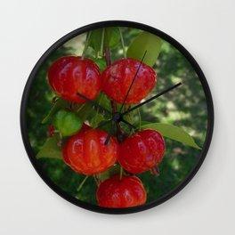 Fruta Pitangas Brasileiras !! Wall Clock