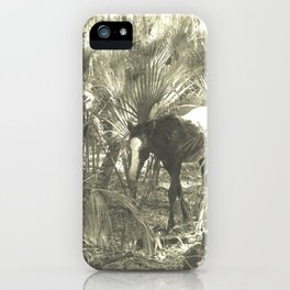 Wild Horse in the Woods iPhone Case