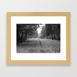 Walking Down A Wooded Road Framed Art Print