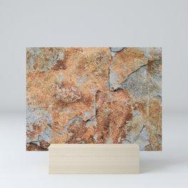 Shale rock surface texture Mini Art Print