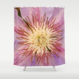 Sugar-Pink Flower Design Shower Curtain