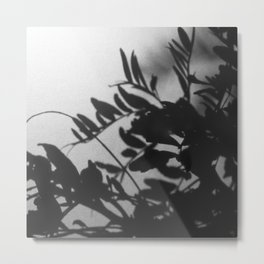 Veiled Nature 3 Metal Print