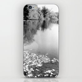 lake landscape and reflections iPhone Skin