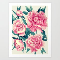 Peonies (soft tone) Art Print