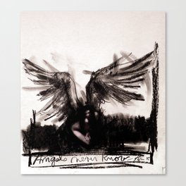 Angels Never Know Canvas Print