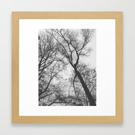 Bared Framed Art Print