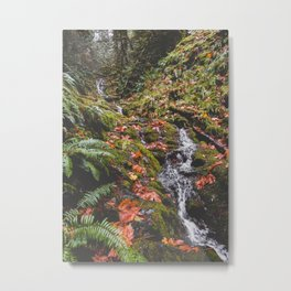 PNW Fall Waterfall Metal Print