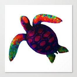 Turtle Magenta jGibney The MUSEUM Society6 Canvas Print