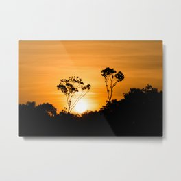 Amazon Sunset Metal Print