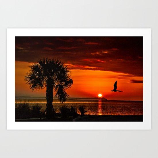 Take me to the sun Art Print