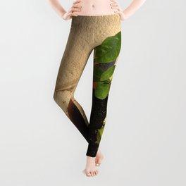 Resilient Leggings