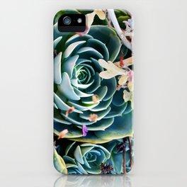 Estate Sale Succulents iPhone Case