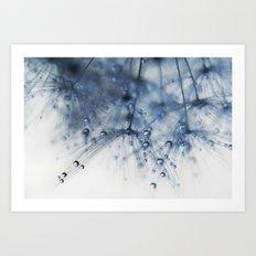 dandelion blue drop Art Print