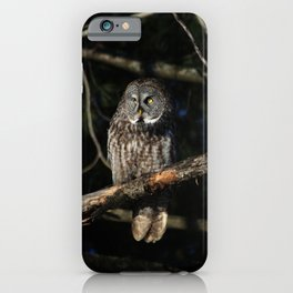 Darkness I defy thee iPhone Case