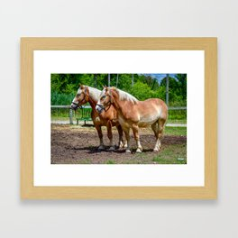 """Equine Duo"" Framed Art Print"