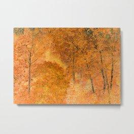 Autumn shine Metal Print