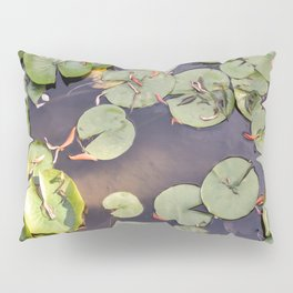 Pond Pillow Sham