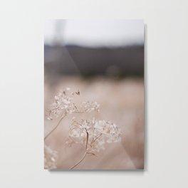 Floral #2 Metal Print