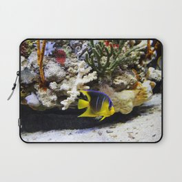 Tropical Fish Cutie Laptop Sleeve