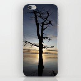 Shadow tree at dawn - Khövsgöl Mongolia iPhone Skin