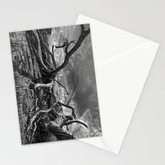 Deadwood Stationery Cards