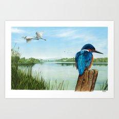 Martin Pescatore nella riserva naturale di Nazzano Art Print
