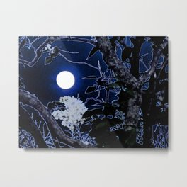 Mystical Moon and Viburnum Metal Print