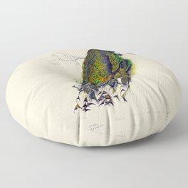 Vintage Peacock Floor Pillow