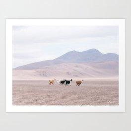 Pastel Llamas - South America Landscape Art Print