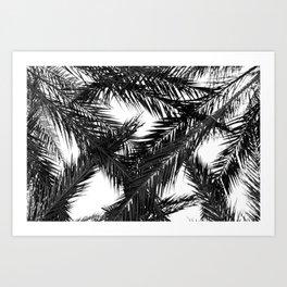 Tropical Darkroom #148 Art Print