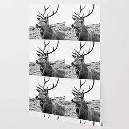 The Stag on the hill - b/w Wallpaper