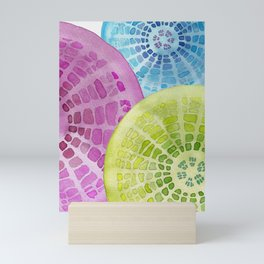 Microscopic: Diatoms Mini Art Print