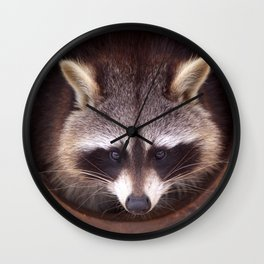 Raccoon Wall Clock