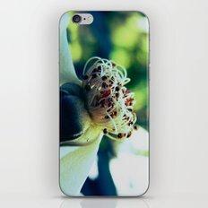 Disheveled flower iPhone & iPod Skin